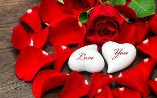 Bài hát Valentine bằng tiếng Anh hay nhất mọi thời đại