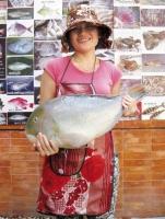 địa chỉ mua hải sản tươi sống uy tín, chất lượng tại thành phố Hồ Chí Minh