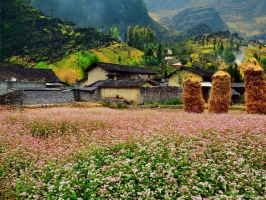 điểm đến tuyệt vời nhất tại Việt Nam cho tháng đầu thu