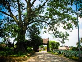 Thương hiệu làng nghề nổi tiếng Hà Nội