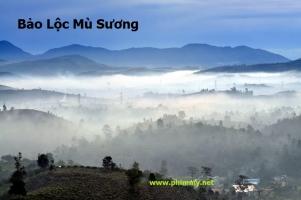 Địa điểm du lịch siêu đẹp ở thành phố sương mù Bảo Lộc - Lâm Đồng