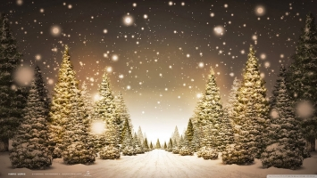 điều có thể bạn chưa biết về ngày lễ Giáng sinh