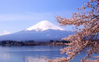 Thiên đường mua sắm nổi bật nhất tại Tokyo Nhật Bản