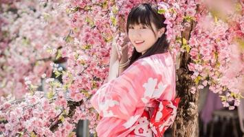 Công ty tư vấn du học Nhật Bản uy tín nhất Hà Nội