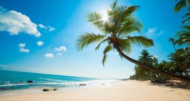 Bãi biển đẹp nhất Việt Nam