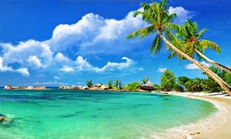 Bãi biển hoang sơ và đẹp tuyệt ở Vũng Tàu không phải ai cũng biết