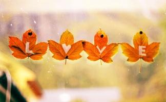 Bài hát về em và mùa thu