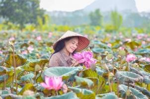 Bài thơ hay về hoa sen