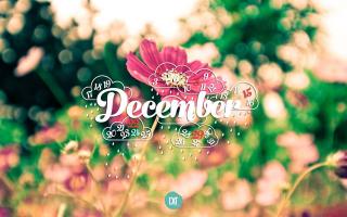 Bài thơ hay viết về tháng 12