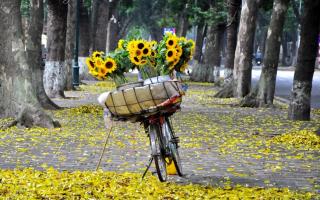 Bài thơ hay về thời khắc giao mùa cuối thu đầu đông