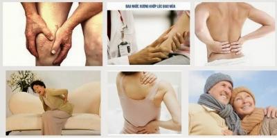 Bài thuốc dân gian trị đau xương khớp