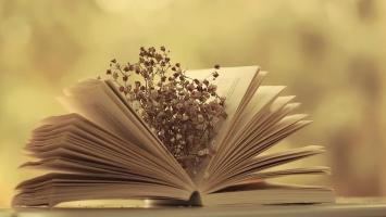 Bí quyết giúp bạn ôn tập tốt môn Ngữ Văn cho kì thi Đại Học
