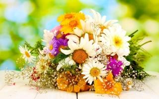 Cách giữ hoa tươi lâu đơn giản tại nhà