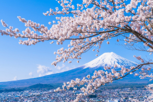 Bí quyết tiết kiệm chi phi khi đi du học Nhật