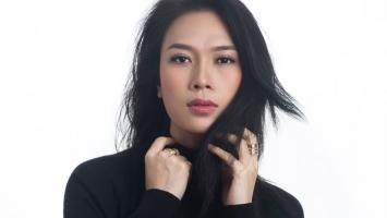 Ca sĩ Việt Nam có hoạt động nổi bật nhất năm 2017