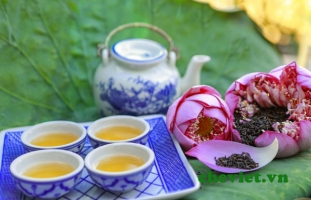 Top 10 Loại trà uống ngon nhất ở Việt Nam