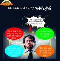 Nguyên nhân khiến chúng ta bị stress trong công việc
