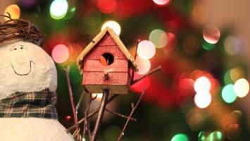 Món quà Giáng sinh ( Noel) ý nghĩa và lãng mạn nhất cho bạn gái