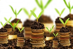 Cách tiếp cận các nhà đầu tư dành cho các Startup