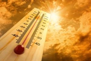 Căn bệnh thường gặp nhất trong mùa nóng