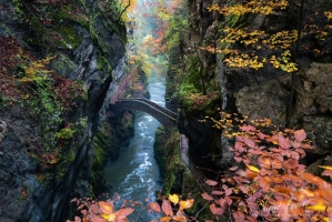 Cây cầu đẹp như cổ tích đáng chiêm ngưỡng nhất thế giới