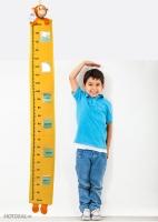 Món ăn và cách chế biến từ rau giúp trẻ tăng chiều cao