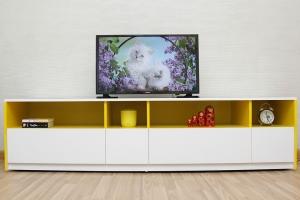 Chiếc tivi 32 inch giá rẻ nhất cho gia đình của bạn
