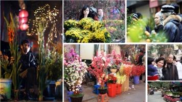 Chợ hoa Tết nổi tiếng nhất Hà Nội năm 2017