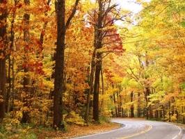 Con đường đẹp nhất thế giới