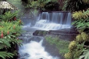 Con suối đẹp nhất ở Việt Nam bạn nên đến một lần