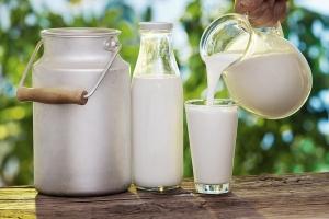 Công dụng làm đẹp bằng sữa tươi không đường hiệu quả nhất