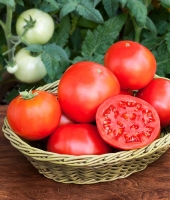 Công dụng tuyệt vời của quả cà chua cho sức khỏe và làm đẹp