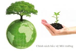 Dịch vụ tư vấn môi trường chuyên nghiệp tại Đà Nẵng