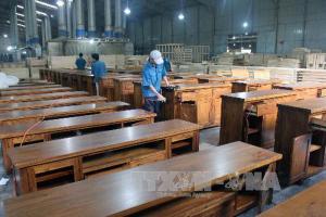 Công ty sản xuất chuyên gỗ chất lượng nhất tại Bình Định