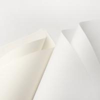 Công ty sản xuất giấy và phân phối giấy giá rẻ và uy tín nhất Việt Nam