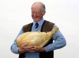 Kỷ lục Guinness kì lạ nhất hành tinh