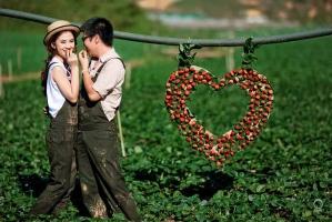 Địa điểm hưởng tuần trăng mật đẹp nhất ở Việt Nam