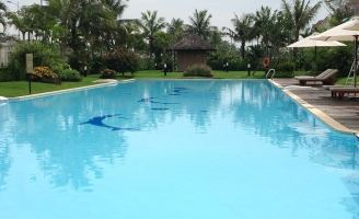 địa chỉ học bơi tốt và uy tín tại Hà Nội