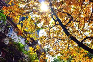 địa điểm chụp ảnh đẹp nhất ở Hà Nội vào mùa thu