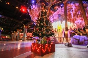 Địa điểm đón Giáng sinh tuyệt nhất tại Hà Nội và Sài Gòn