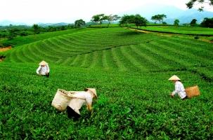 địa điểm du lịch lý tưởng nhất Thái Nguyên
