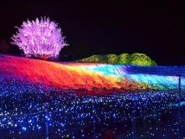 địa điểm nên tham quan khi đến Nhật Bản