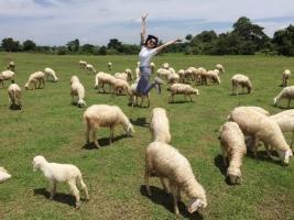 điểm du lịch hấp dẫn nhất tại  huyện Yên Thành, tỉnh Nghệ An