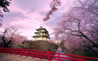 địa điểm du lịch Hàn Quốc không thể bỏ qua