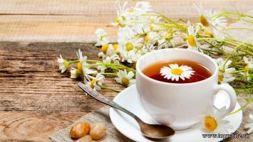 đồ uống giúp tỉnh táo thay thế cafe