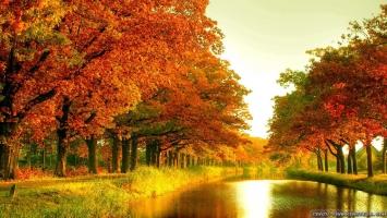 Con đường mùa thu đẹp nhất thế giới