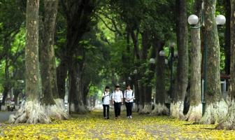 Con đường đẹp nhất Việt Nam