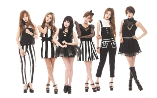 Giai đoạn T-ara đã trải qua trong gần 8 năm sự nghiệp ca hát là Fan ai cũng biết