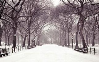Cách giữ gìn sức khỏe trong mùa đông
