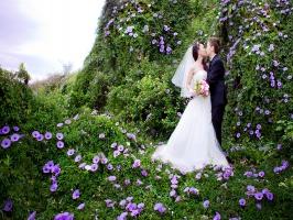 Địa điểm chụp ảnh cưới lãng mạn tại Đà Lạt